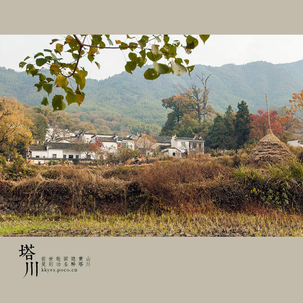 tachuan_009