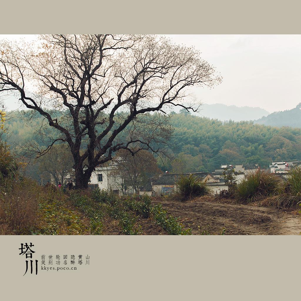 tachuan_011