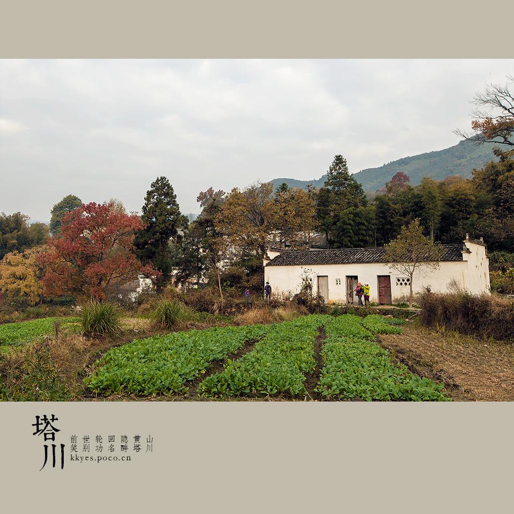tachuan_008