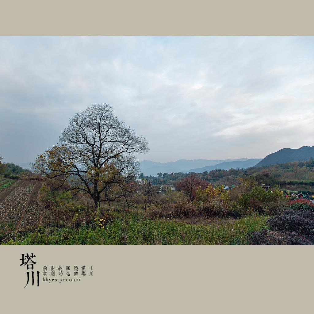 tachuan_003